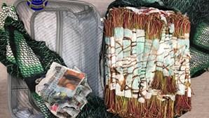 Presos no Aeroporto de Lisboa por importar 'khat'