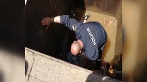 Mulher cai em contentor subterrâneo do lixo no centro do Porto