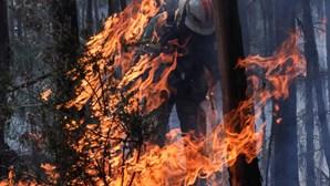 Prossegue julgamento para apurar responsabilidades no caso dos incêndios de Pedrógão Grande