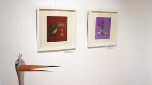 'Bichos' são tema para exposição em Torres Vedras