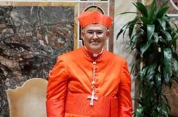D. Tolentino fotografado pelo CM no Palácio Apostólico, após a cerimónia