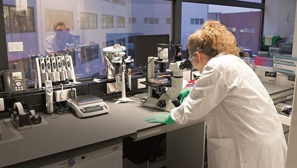 Alemanha trava fim das patentes das vacinas da Covid-19