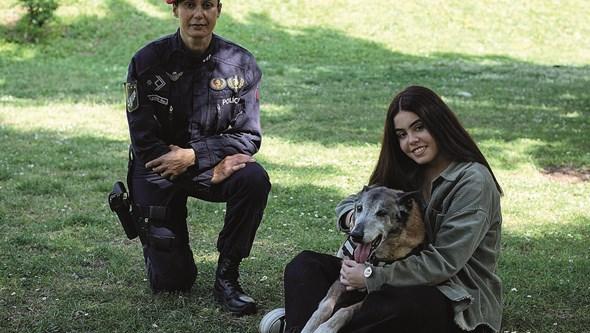 Cães da polícia com direito a reforma. Saiba tudo sobre o trabalho das equipas cinotécnicas