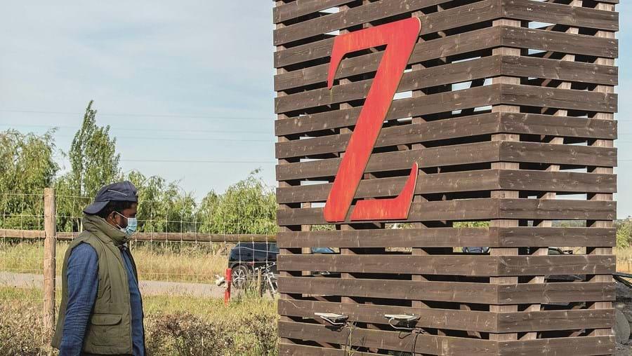 Imigrantes asiáticos estão alojados no Zmar. Uma dúzia saiu esta sexta-feira