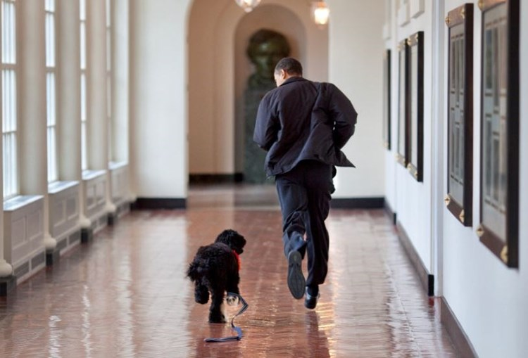Barack Obama com o cão Bo