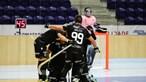 Sporting sagra-se campeão nacional de hóquei em patins