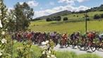 Volta ao Alentejo em bicicleta com transmissão em direto na CMTV
