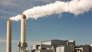 Gases de refrigeração são 23 mil vezes piores do que CO2, diz investigadora