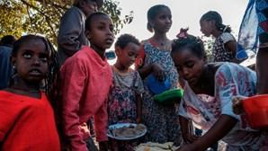 Trinta mil crianças podem morrer de fome no Tigray