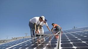 Centrais solares ameaçam agricultura no Algarve