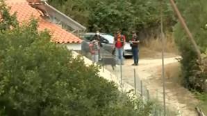 Cadela desaparecida com Noah é encontrada a três quilómetros da casa da família