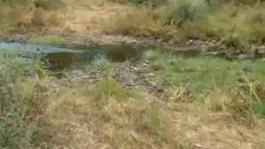 Reconstituição do percurso de Noah até ao riacho onde foram encontradas peças de roupa de criança