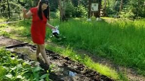 De pinhas a esterco de cavalo: Rússia abre trilho para ser percorrido com os pés descalços