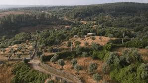 Imagens de drone mostram distância entre local onde desapareceu Noah e pegadas foram encontradas
