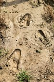 Pegadas de uma criança encontradas na zona de buscas por Noah