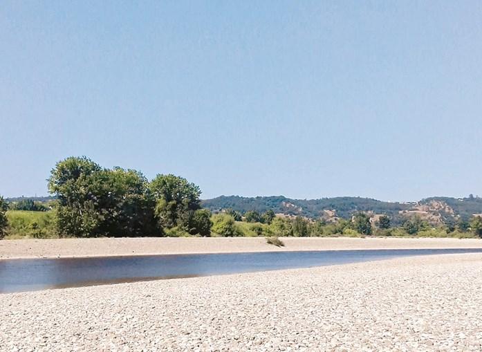 Caudal do Tejo entre Abrantes e Constância está nos mínimos. Agricultores desesperam com a falta de água para a rega