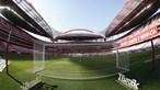 Benfica vai a eleições até ao final do ano. Leia aqui o comunicado na íntegra
