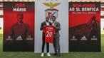 'Jorge Jesus foi determinante na minha escolha': João Mário apresentado no Benfica