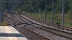 Governo prolonga de novo por seis meses contrato de serviço público com IP para ferrovia