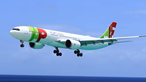 Avião da TAP aterra a metros da praia nas Caraíbas. Veja as imagens