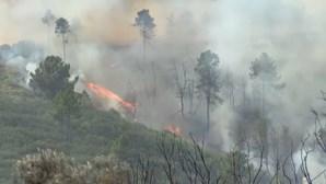 Trinta e seis concelhos de seis distritos em risco máximo de incêndio