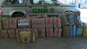 Sete detidos e mais de duas toneladas de haxixe apreendidas em megaoperação da PJ