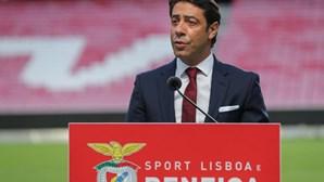 Servir o Benfica quer mais esclarecimentos sobre negócios de Rui Costa