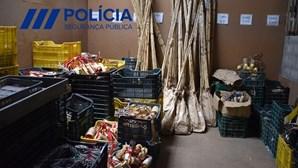 Apreendidos mais de 20 mil artigos pirotécnicos e uma tonelada de produtos explosivos em Braga e Aveiro