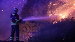 A longa noite de combate às chamas em Monchique e Portimão em imagens