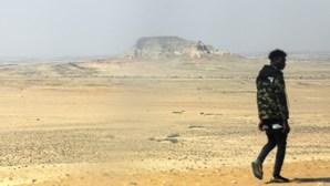 """ONG diz que seca no sul de Angola """"está a ser catastrófica"""""""