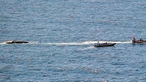Baleia gigante dá à costa na baía de São Martinho do Porto