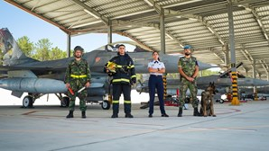 Força Aérea abre 500 vagas em Regime de Contrato