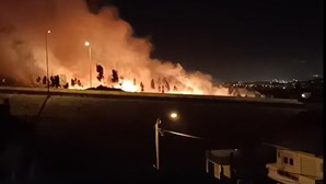 Mais de 20 operacionais combatem incêndio em zona de mato em Sintra