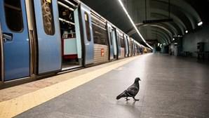 Assinados contratos de 554 milhões de euros para Metro de Lisboa prolongar linha vermelha e expandir até Loures