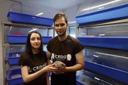 Clarisse Rodrigues e Tiago Vieira , fundadores do CRIDO, com um dos hóspedes do centro dedicado aos ouriços