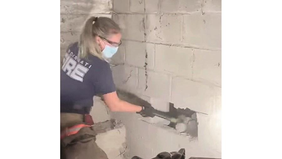 Cadela desaparecida estava presa atrás de uma parede