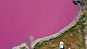 Poluição altera cor de lagos na Patagónia para rosa