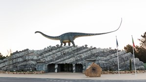 Dino Parque Lourinhã conquista Prémio Cinco Estrelas Regiões pelo terceiro ano consecutivo