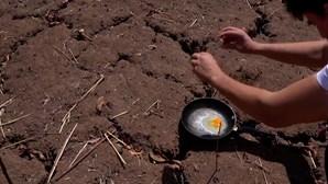 Temperaturas recorde na Grécia permitem fritar ovos no solo...literalmente