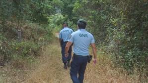 Militares da GNR agredidos por turista em Silves