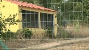 Pelo menos 11 cães morrem abandonados num hotel canino em Mafra