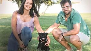 Alfredo, um pug 'influencer' na Internet