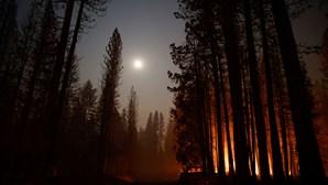 Bombeiros tentam impedir que fogo atinja cidade no norte da Califórnia
