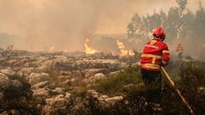 Plano Operacional de Combate a Incêndios Florestais na Madeira assegurado por cinco mil elementos