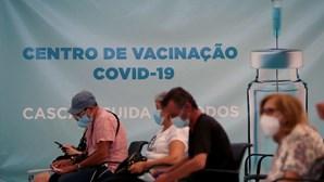 Vacinação grátis contra a gripe em lares avança na segunda-feira