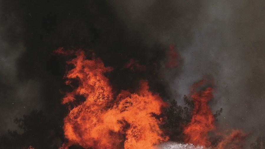 Calor e vento forte ajudam a propagar incêndios