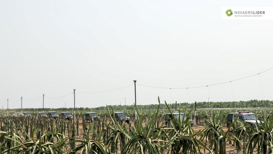 Novagrolider, um dos maiores projetos agroindustriais em Angola
