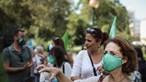 PAN denuncia abates de árvores 'abusivos' em Lisboa