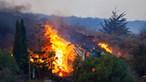IPMA avisa que é 'muito pouco provável' que cinzas das Canárias afetem Madeira nos próximos dias