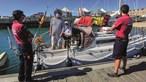 Orcas atacam veleiro ao largo de Peniche